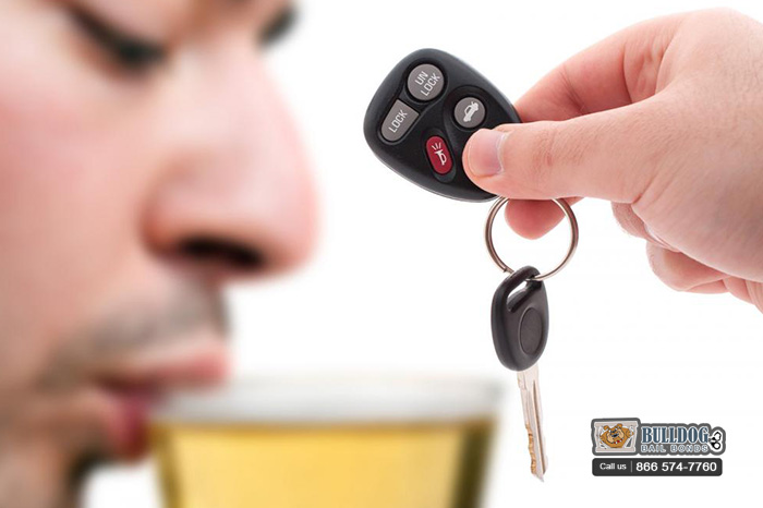Halloween and DUI Checkpoints