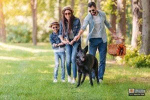 California's Leash Laws